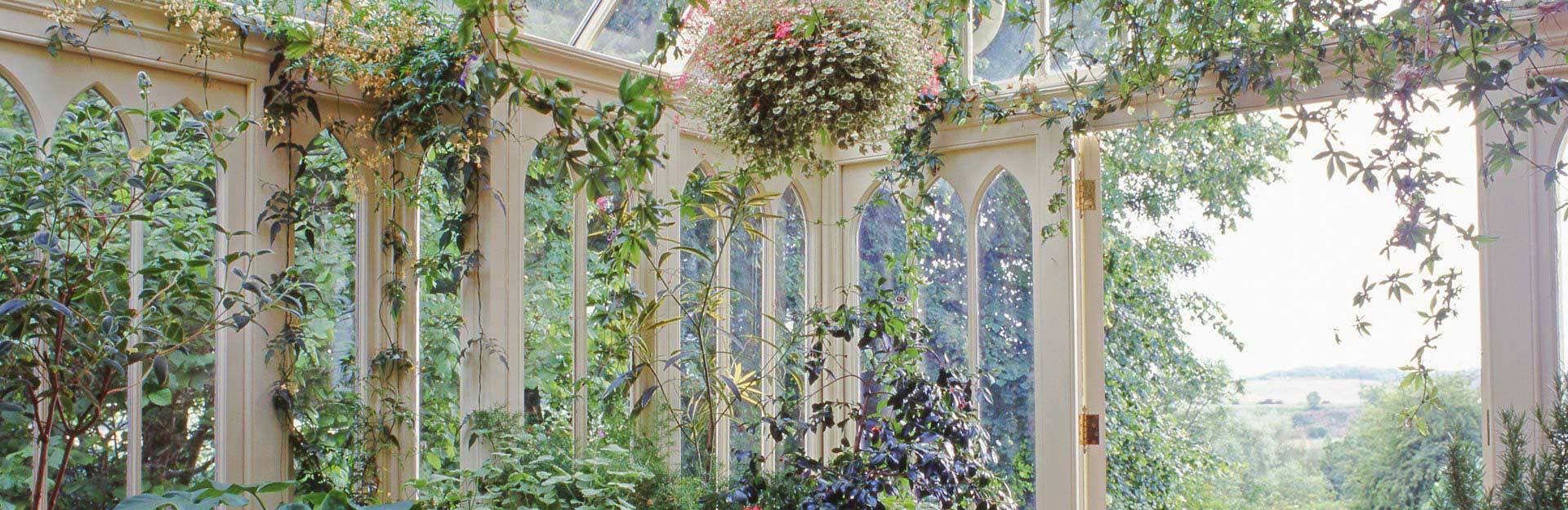 Conservatory built purposely for plants